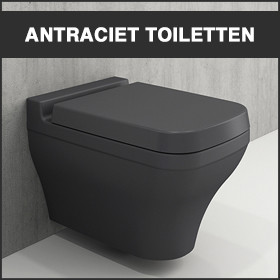 Antraciet toiletten